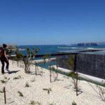 Музей Средиземноморья открылся в Марселе